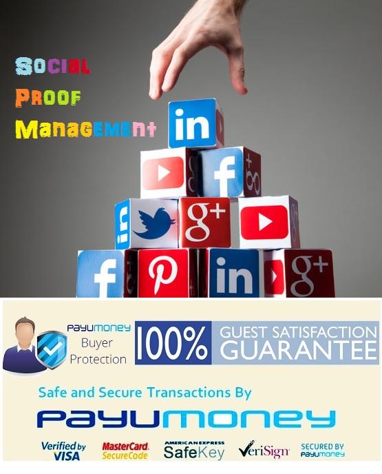 Social Media Campaign Enterprise Plan Brand Indidigital